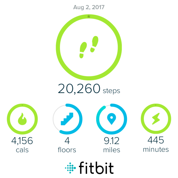 fitbit_sharing_571574393